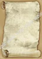 Галерея бумаги, 100 гр, уп/50  Herold